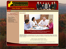 Business Transition Strategies Launches New Website